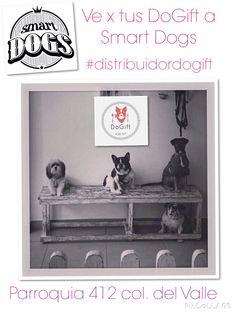 Recuerda aprovechar todos los servicios de @smartdogsdf y llévate unos DoGift! @en_ladelvalle @eje_universidad