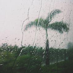 raindrops | Verena Kiesinger | VSCO