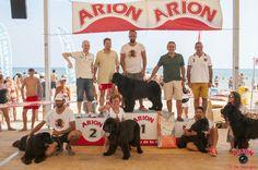 Exhibición de perros de rescate en Playa Can, Gandia