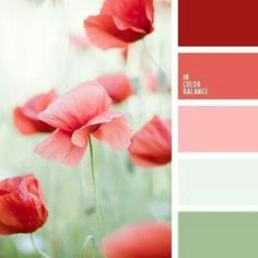 red + coral + green Kitchen Color Palettes, Kitchen Colors, Kitchen Ideas, Burgundy, Cool Kitchens, Amazing, Wine Red Hair