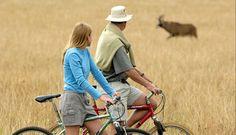 Malawi safari honeymoon