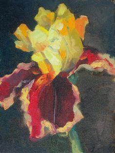 golden wine iris by Richard Clem, Oil Painting 8x6