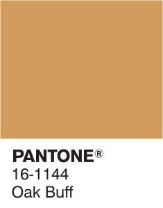 Pantone's Fall/Winter 2015 Color Report Pantone Color Chart, Pantone Colour Palettes, Colour Schemes, Color Trends, Color Combos, Pallette, Tadelakt, Colour Board, Color Stories