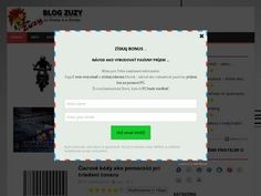 Blog Zuzy