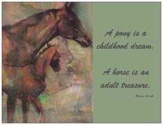 horse (so true)