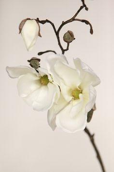 "Silk Flower Stem - 19"" Magnolia Spray in White - Floral Arrangement Supply by simplyserra on Etsy https://www.etsy.com/listing/122402574/silk-flower-stem-19-magnolia-spray-in"