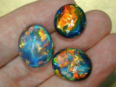 funnywildlife:  Black Opals