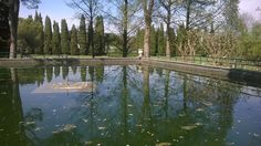 La Fontana delle Tartarughe