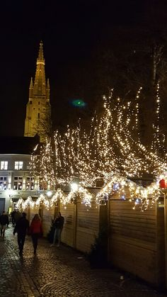 Bruges Christmas market by night