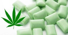 Marijuana Chewing Gum