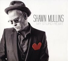 Shawn Mullins - My Stupid Heart