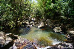 http://www.imobiliariabuzz.com.br/blog/wp-content/uploads/2014/06/Lagoa-do-Peri_3.jpg