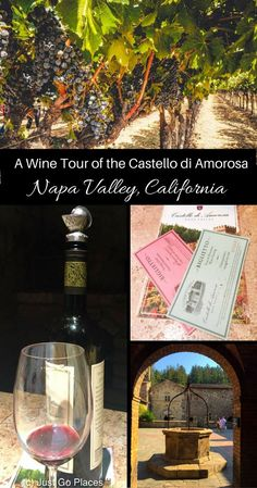 family friendly vineyard in Napa California With Kids, California Travel, California Wine, Canada Travel, Travel Usa, Travel Tips, Travel Guides, Travel Destinations, Drinking Around The World