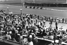 A blast from the past! Yonkers Raceway, Yonkers, New York.