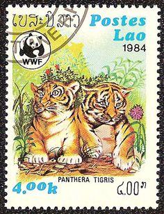 LAOS 1984