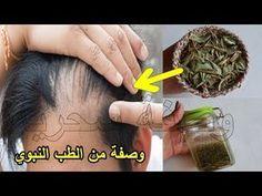 مدكور في القرآن لعلاج تساقط الشعر ت نب ت وتملأ الفراغات من الامام للرجال والنساء من الطب النبوي Y Hair Care Oils Beauty Recipes Hair Beauty Skin Care Routine