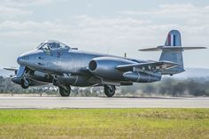 Gloster Meteor Mk 8