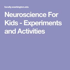 Neuroscience For Kids - Experiments and Activities