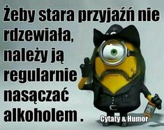 Weekend Humor, Funny Mems, Smile Everyday, Man Humor, Motto, Happy New Year, Minions, Keep Smiling, Friendship
