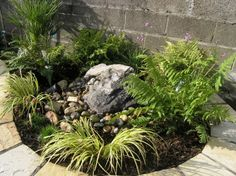 Broken Pot Turned Into A Small Rockery Garden Pinterest