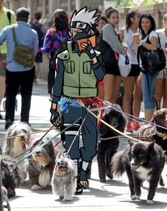 One of the best Naruto memes lol Naruto Uzumaki Shippuden, Naruto Kakashi, Anime Naruto, Naruto Teams, M Anime, Naruto Comic, Naruto Cute, Anime Meme, Funny Anime Pics