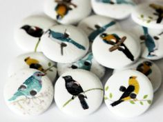 15 Bird Buttons - 15mm - 2 holes - Round Painted - White Wood - Garden Birds Button - Bird Print - PW74 by ButtonEnvyUk on Etsy https://www.etsy.com/listing/205267547/15-bird-buttons-15mm-2-holes-round