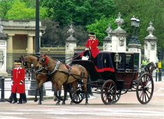 Cleveland Bays from the Royal Mews leave Buckingham Palace.