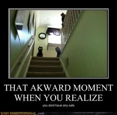 Ha ha ha ha - That awkward moment when you realise you don't have any cats.