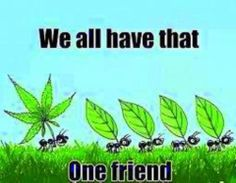That one friend...