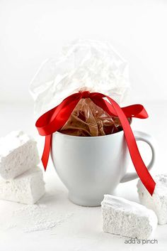Hot Chocolate Mug Gift Idea from addapinch.com
