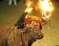 """This savage bull run is known as Toro Jubilo, and the bull is called Toro de Fuego, which translates as """"bull of Fire"""". As the pitch burns like a bonfire on the horns, it scorches his eyes and face causing it unspeakable pain. Disoriented and in agony, the bull often runs into walls and hurts himself even more, while the crowd run around him and cheers. http://www.all-creatures.org/articles/video-flv-toro-faace.html"""