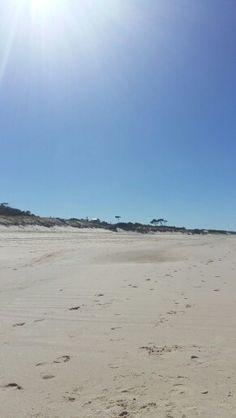 Toda la belleza de la playa en Parque del Plata.