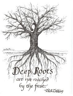 Deep Roots notecard set Another work from a friend (ErikaRaeHeins on Etsy), that is both beautiful a Jrr Tolkien, Tolkien Quotes, Hobbit Quotes, Cs Lewis, Roald Dahl, New Quotes, Bible Quotes, Funny Quotes, Career Quotes
