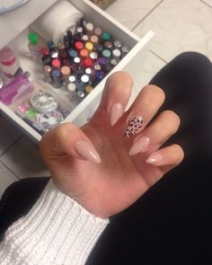 Short Stiletto Nail's with Leoprint #essence#P2#Manhatten#lacura#Jolifin#GermanDreamNails#hobby#learnit
