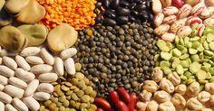 Todo lo que debes saber sobre las legumbres, ¡lo tienes aquí!