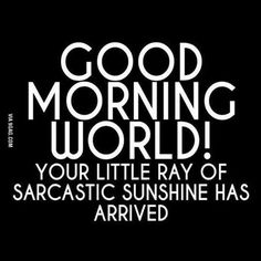 Sarcasm Quotes, Sassy Quotes, Humor Quotes, Humor Humour, Funny Work Quotes, Memes Humor, Sarcasm Meme, Happy Humpday Quotes, Fun Life Quotes