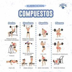 Ejercicios de aislamiento vs. ejercicios multiarticulares • FullMusculo Map, Marketing, Fitness, Exercises, Training, Weight Loss, Shape, Compound Exercises, Peta