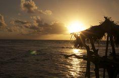 Pelican Bar Jamaica Vacation, Celestial, Bar, Sunset, Outdoor, Vacation In Jamaica, Outdoors, Sunsets, Outdoor Games