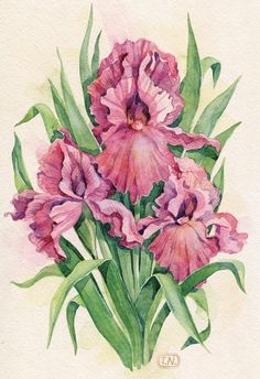 flowers by Natalia Tyulkina, via Behance