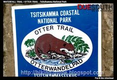 Waterfall Hiking Trail (aka Day 1 Route and start of the Otter Trail) Hiking Guide, Hiking Gear, Hiking Trails, Crossed Fingers, Otters, South Africa, Coastal, Waterfall, National Parks