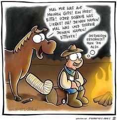 lustiges Bild 'Pferd.jpg'- Eine von 60388 Dateien in der Kategorie 'Lustiges' auf FUNPOT.