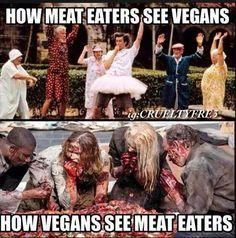Vegan vs. Meat eaters