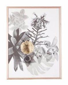Bonnie and Neil Rare Garden Framed Print | Bonnie and Neil – Salt Living or online at www.saltliving.com.au #saltliving #bonnieandneil #screenprinting #linen #print
