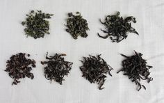 The 101 on Oolong tea - What it is, how it's made, why it's good for you, and more.