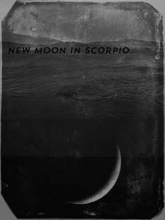 new moon in scorpio solar eclipse – go deep and transform