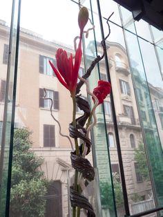 #Macro di Roma #fiori e #colori