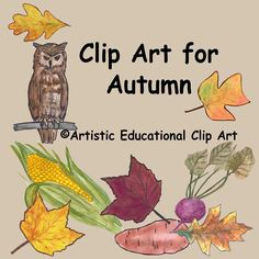 Clip Art for Autumn:  Items included in color and black line are: Acorn Apples – red, green, yellow Bat silhouette Beet Cat silhouette Core of an apple – red and green Corn on the cob Grapes Maple leaves – red, deep red, yellow Oak – rounded and pointy leaves, yellow and brown Great horned owl Pie Pumpkin Rooster Tulip tree leaves – brown and yellow Wheat Zinnias – red and yellow Yam  All the clip art is 300Dpi.
