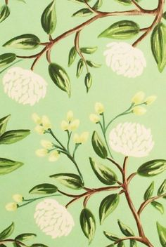 Buy Rifle Paper Co - Wrapping Paper - Emerald Peonies - Single Sheet by Rifle Paper Co & receive FREE shipping on Australian orders over $69 & international orders over $120