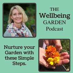 Episode 007 – Nurture Your Garden With These Simple Steps. Most gardeners have to deal with pests, weeds and other problems in the garden, which can make us a little disheartened with our gardening. In this episode I'll share a few simple things to do to ensure your plants grow and your garden thrives. http://soiltosupper.com/episode-007-nurture-your-garden-with-these-simple-steps-podcast/
