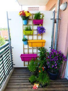 Kleiner Balkon mit verschiedenen Pflanzen und Kräutern in einem vertikalen Beet.